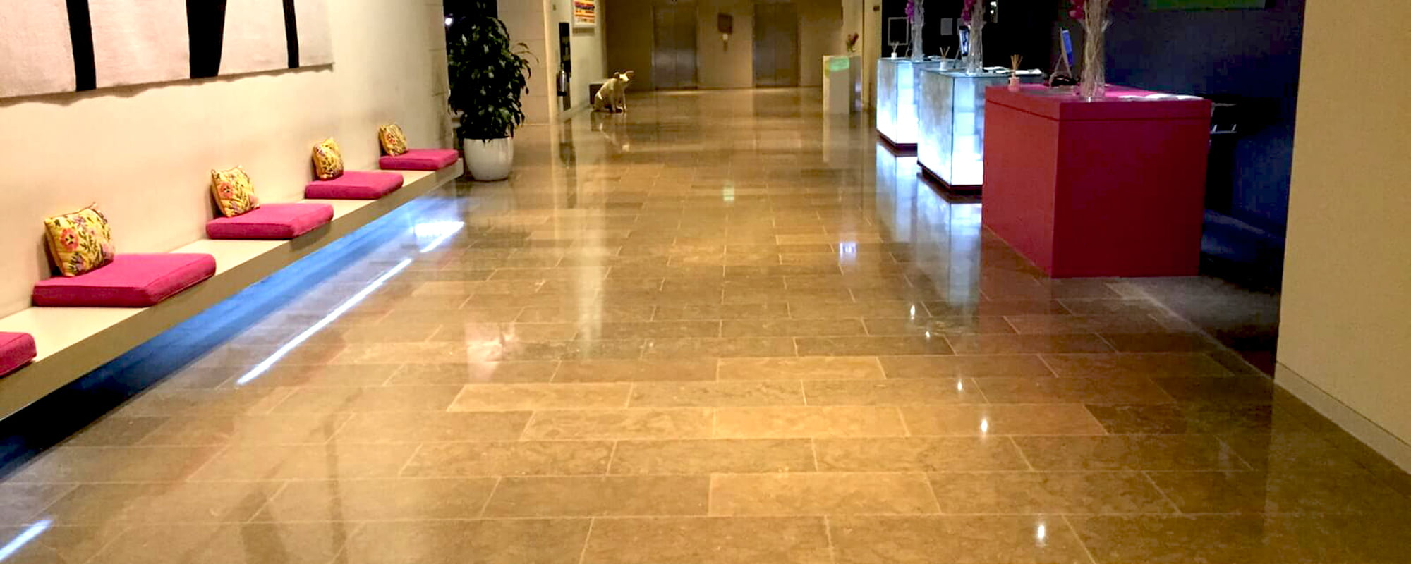 floor polishing services Dublin