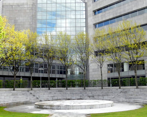 expert public area cleaning services Dublin P Mac